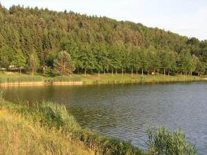 Hársas-tó